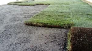 anlägga färdig gräsmatta Spånga