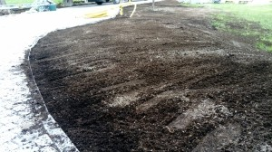 renovering  gräsmatta